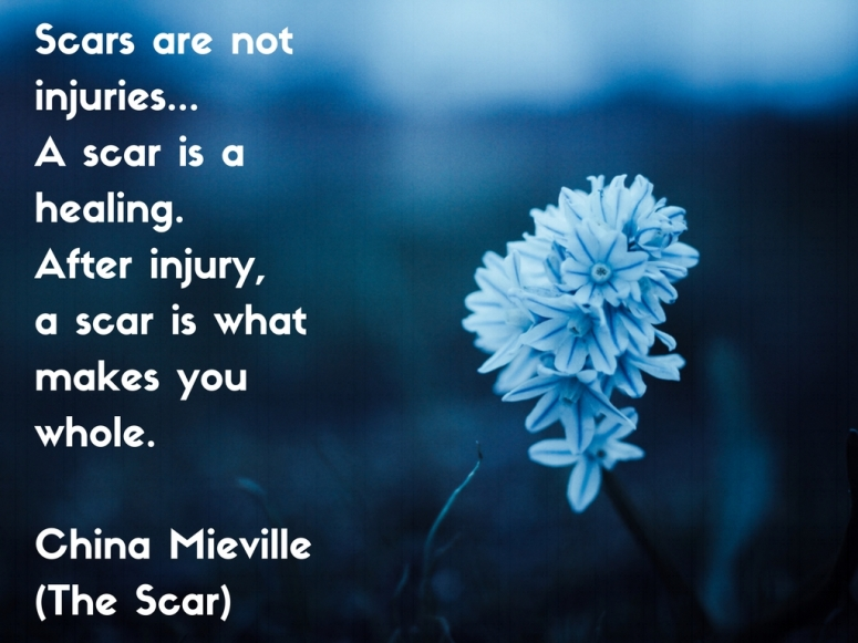 scars-are-not-injuries-a-scar-is-a-healing-after-injury-a-scar-is-what-makes-you-whole-china-mieville