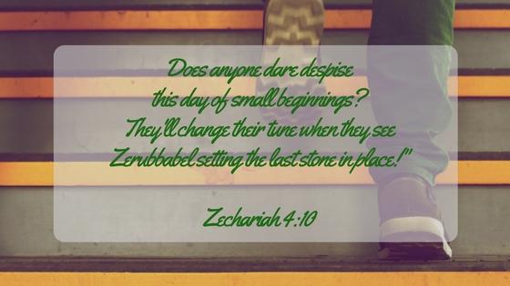 ZECH 4-10