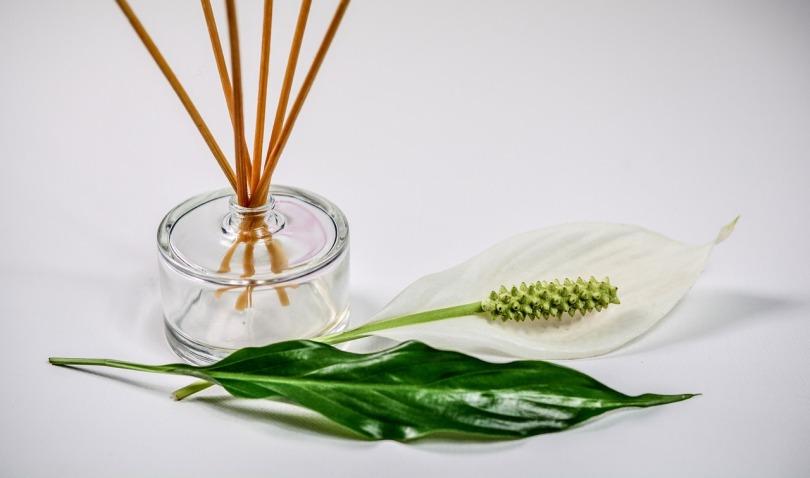 scent-1059419_1280